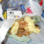 Ana: Este es mi pequeño cubo de reciclaje. Contiene 2 bolsas separadoras de basura orgánica y de envases. El resto de las cosas que se reciclan en esta casa: absolutamente todo no necesitan un sitio especial porque tenemos la suerte de tener enfrente del portal un punto de reciclaje. Un bote de cristal que se utiliza, los periódicos diarios, las pilas, todo se deposita allí prácticamente en el momento. El primero de casa que baje a la calle ya sabe lo que tiene que hacer. Todos estamos implicados, mi marido, mis hijas y yo. Ellas saben perfectamente que todo se recicla y lo hacen como la cosa mas natural del mundo. A modo de anécdota comento que también reciclamos el pan sobrante. Lo aprovechan las gallinas de un vecino.