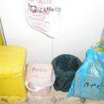 Elena: Tenemos los diversos cubos preparados para poner los residuos en cada uno, en caso de ser restos de medicamentos tenemos una bolsa de plástico para echarlos en ella y luego llevarlos al punto SIGRE, los cubos para reciclar vidrio y envases están juntos y hay otro pequeño para vidrio que está separado porque tenemos gatos, el cubo de orgánicos está dentro de un armario destinado a ese fin. Las pilas y los móviles que ya no se usan, bien nuestros o bien de amigos, se llevan a los correspondientes puntos de recogida y el aceite se recoge en una botella de plástico para luego echarla en los residuos orgánicos.