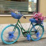 Maxi: Una vieja bicicleta que teníamos en la casa del pueblo y cuyo fin iba ser acabar en la basura, la hemos rescatado para decorar el patio de nuestra casa y este ha sido el resultado.