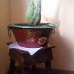 Jose Manuel: Este es el regalo que le he hecho a mi hija para su piso nuevo. He restaurado uno de los baldes de su abuela y lo he utilizado como maceta. En él he introducido varios cactus, alguno de ellos hijos de los que yo tengo en mi finca.