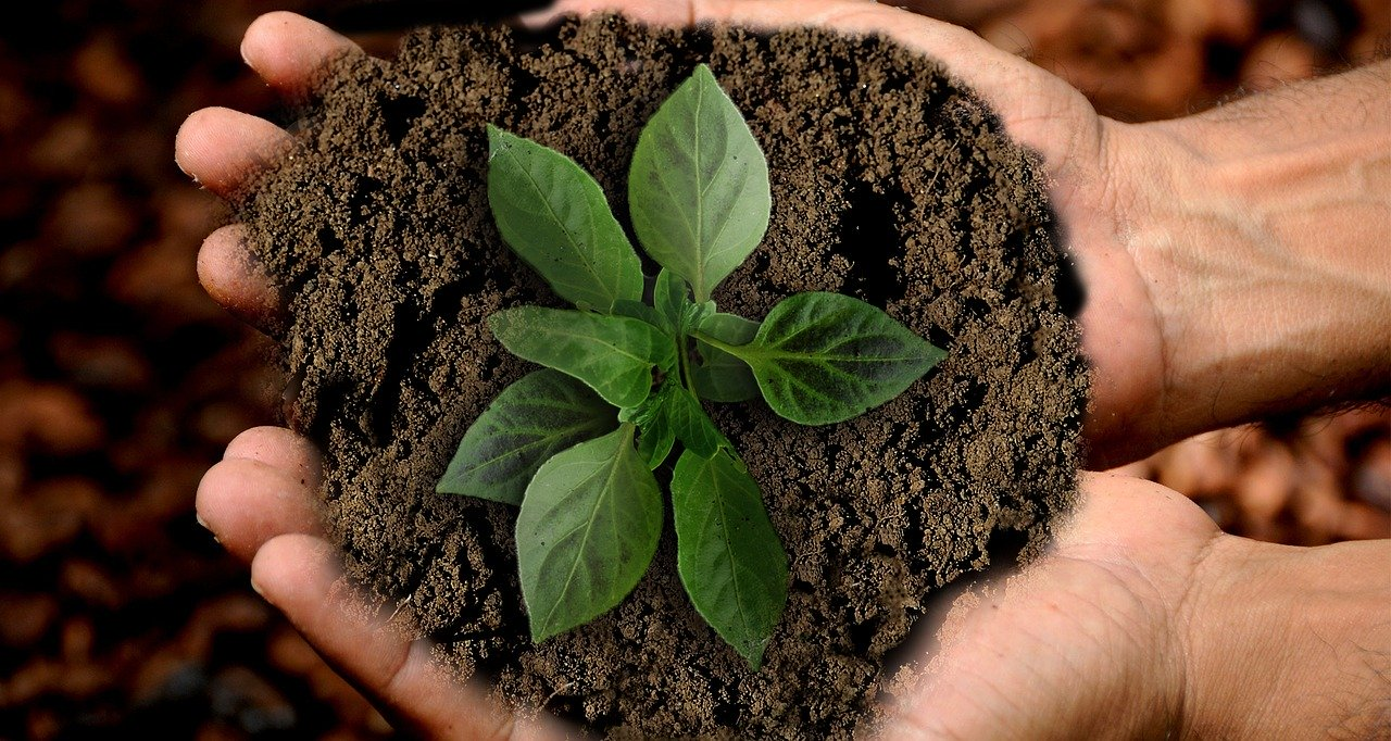 sostenibilidad y responsabilidad social corporativa